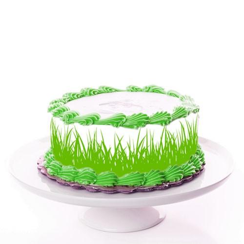 Tortenband_gras_fussball_tortenbild-druckerei
